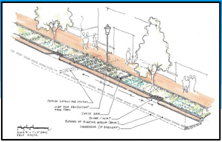 Lead Author And Landscape Designer For The Citys Guidelines Treating Stormwater In Right Of Way Through Features